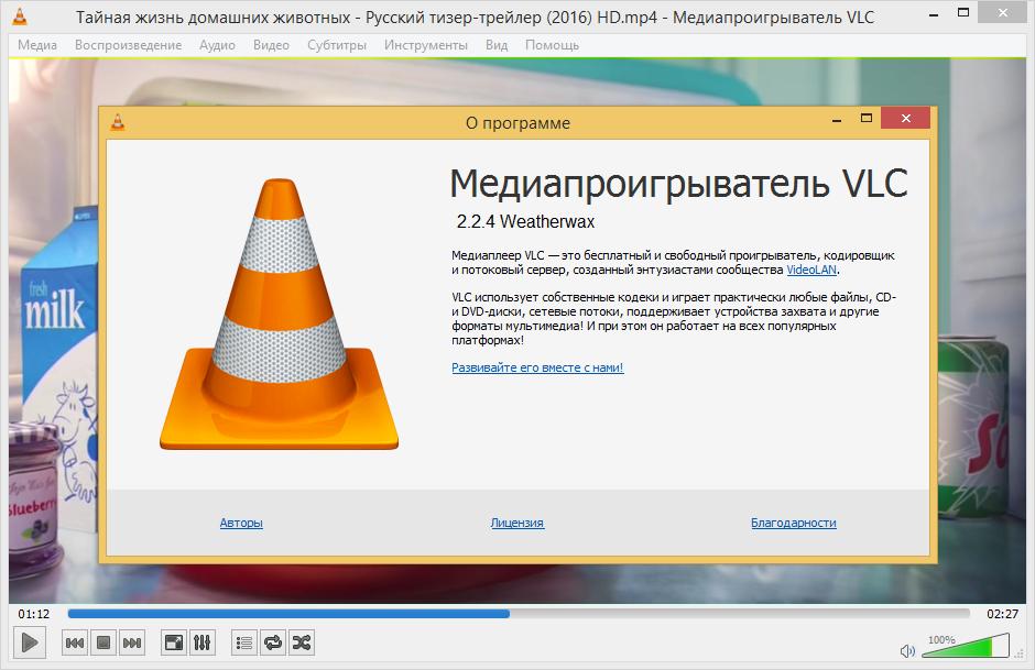VLC Media Player 2.2.4